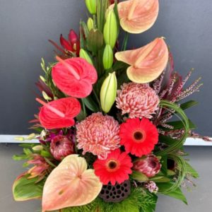 Deluxe Anthurium, Natives and Disbud Arrangement
